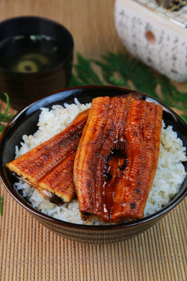 Bowl of broiled eel. On cooked rice in Japan royalty free stock photography