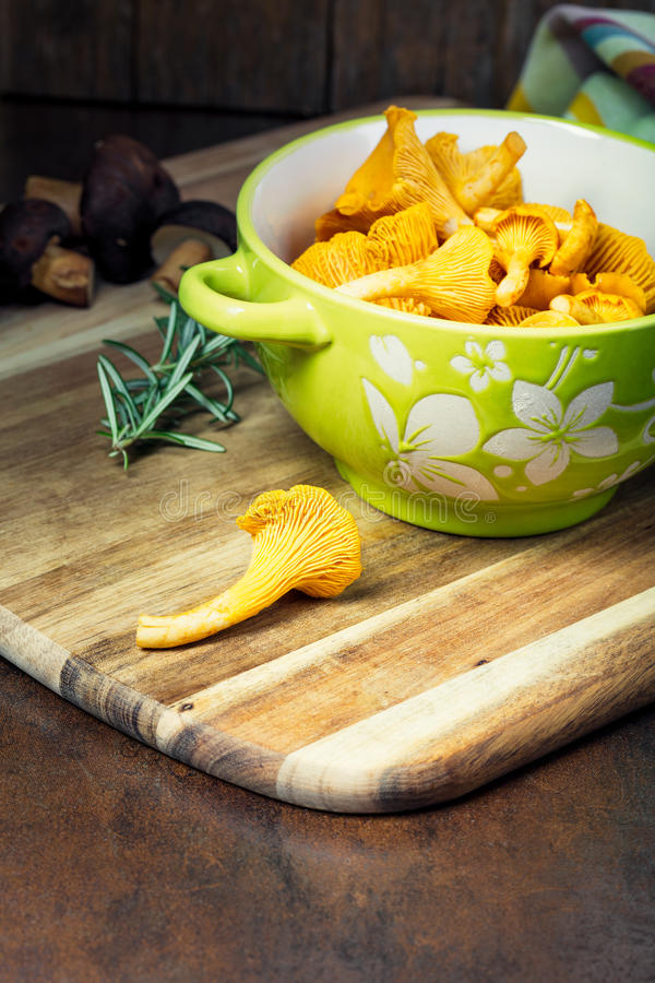Bowl with cantharellus. Yellow chanterelle. And boletus. Different kinds of mushrooms. Seasonal fungi royalty free stock photos