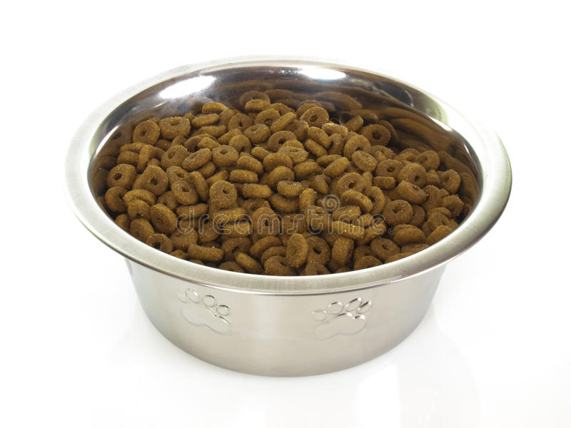 Bowl with cat food royalty free stock photos
