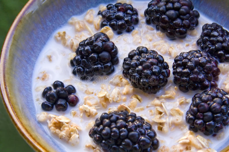 Download Bowl of Cereal stock photo. Image of nature, bowl, cereal - 10217416