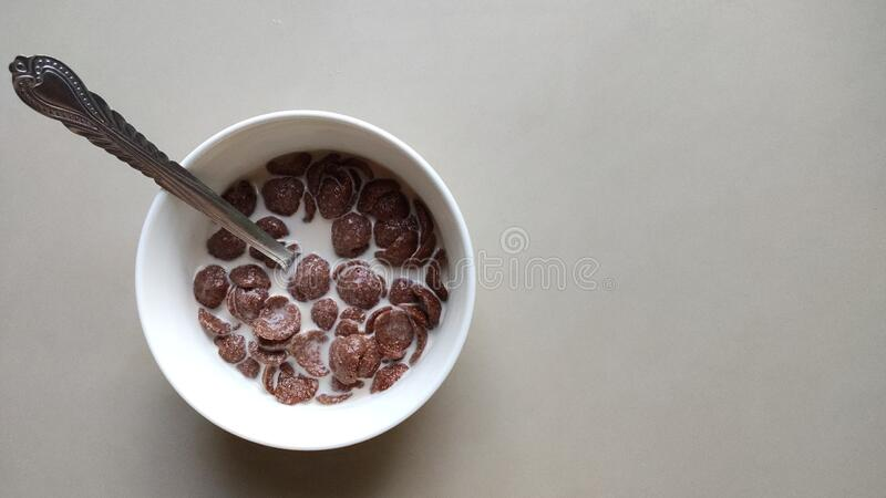 Bowl of cereal with fresh milk for breakfast royalty free stock photography