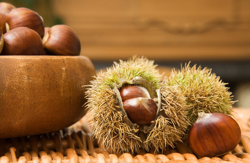Download Bowl of Chestnuts stock photo. Image of capsules, detail - 2932230