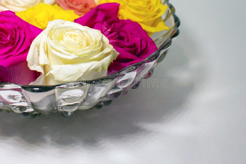 A bowl of colored roses in corner of the frame on white surface stock photo