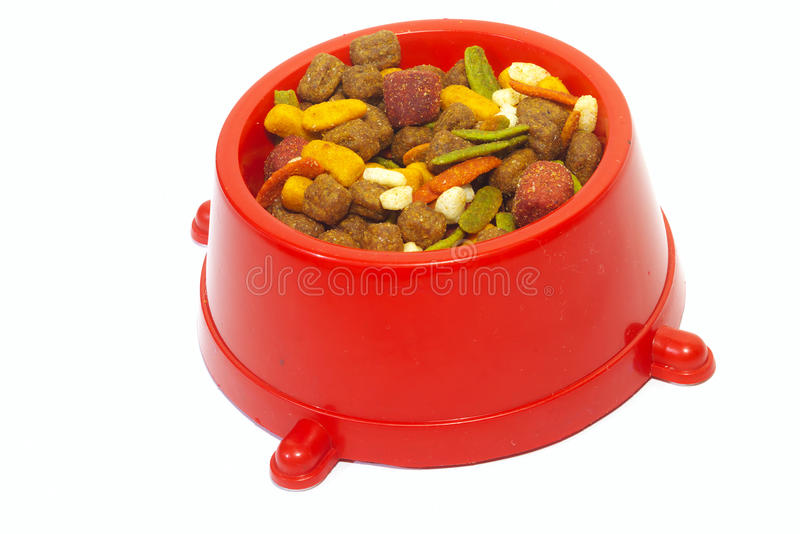 Download Bowl of Dog Food stock image. Image of dish, canine, biscuit - 10677585