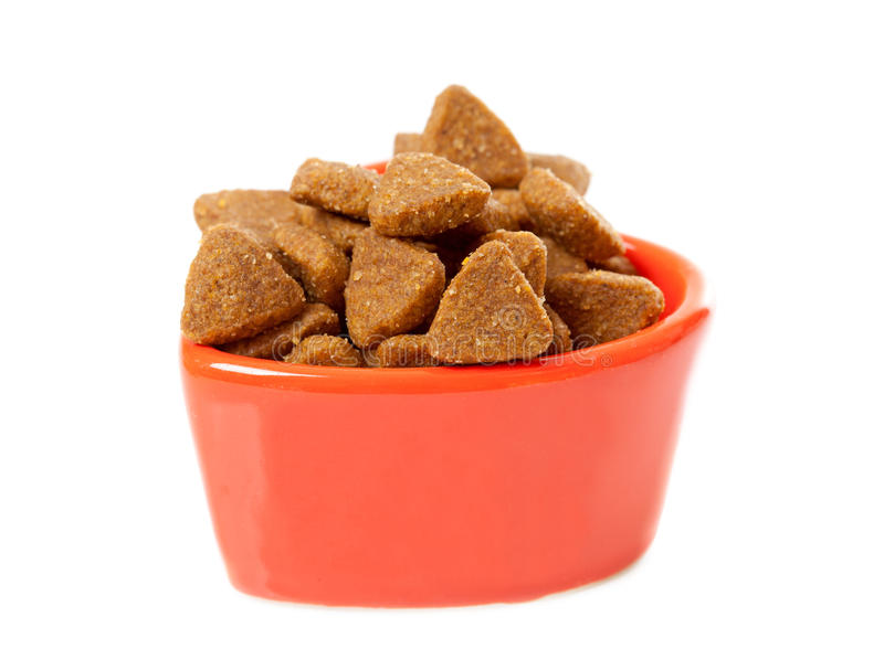 Bowl with dry cat food royalty free stock photography