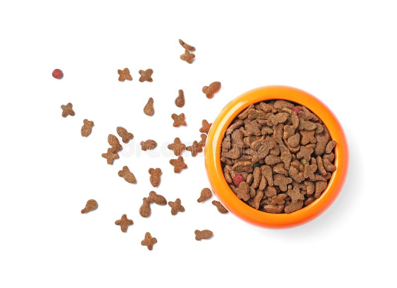 Bowl with food for cat or dog royalty free stock photos