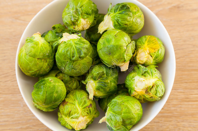 Bowl of Sprouts stock images
