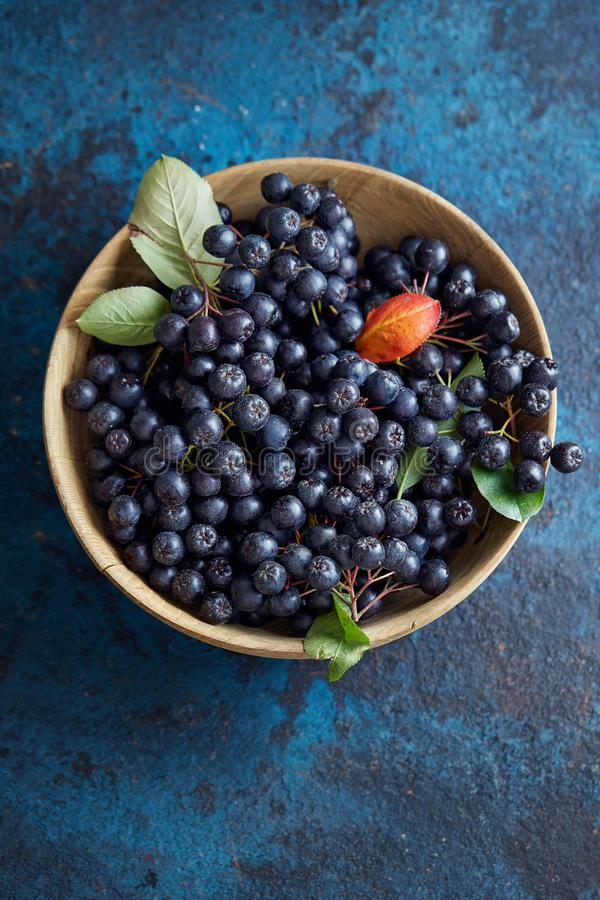 Bowl with freshly picked homegrown aronia berries. Aronia, commonly known as the chokeberry, with leaves stock photos