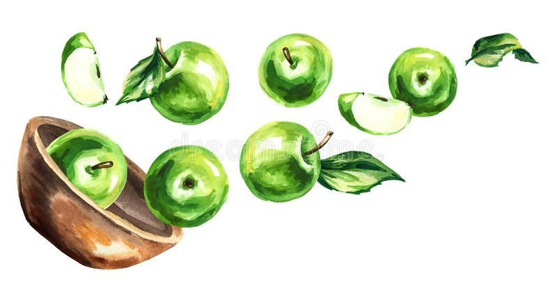 Bowl with green apples. Hand drawn horizontal watercolor illustration stock illustration