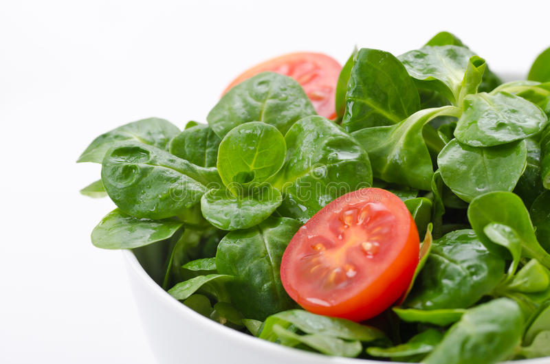 Bowl of green salad and tomatoes royalty free stock photo