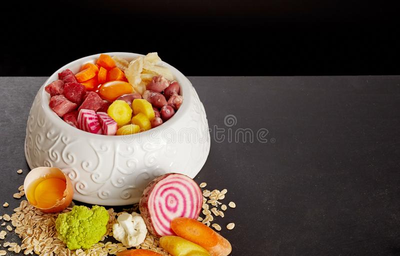 Bowl of healthy food for dog or cat stock photography