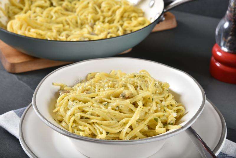 Bowl of Linguine with Clam Sauce. Bowl of delicious, homemade linguine with clam sauce royalty free stock photo