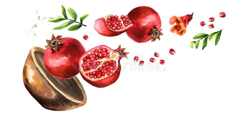 Bowl met Flying frisripe in zijn geheel en gesneden granaatappel met zaden, bloemen en bladeren Afzonderlijke illustratie met de  stock illustratie