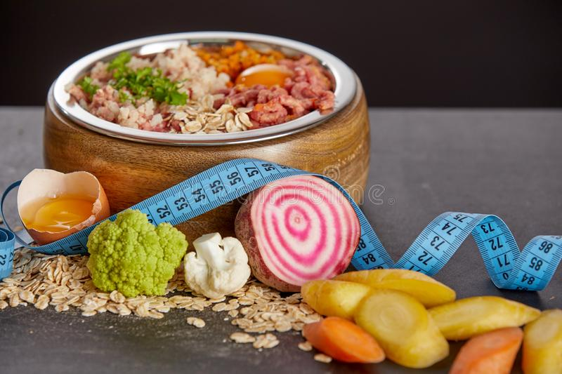 Raw food for dogs diet concept stock images