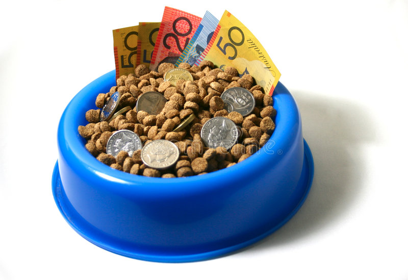 Bowl of money dog food stock photos
