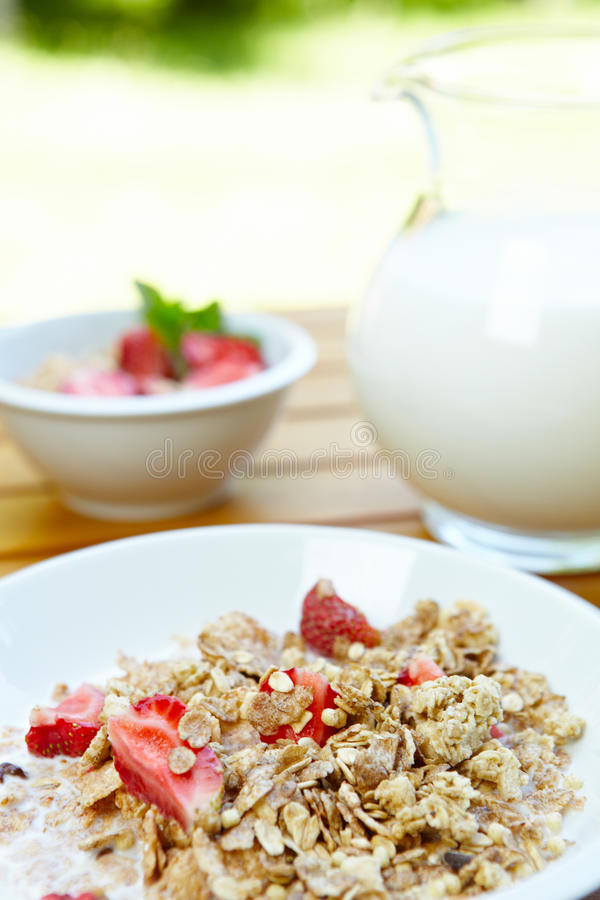 Download Bowl Of Muesli With Fresh Fruits Stock Photo - Image: 19793616