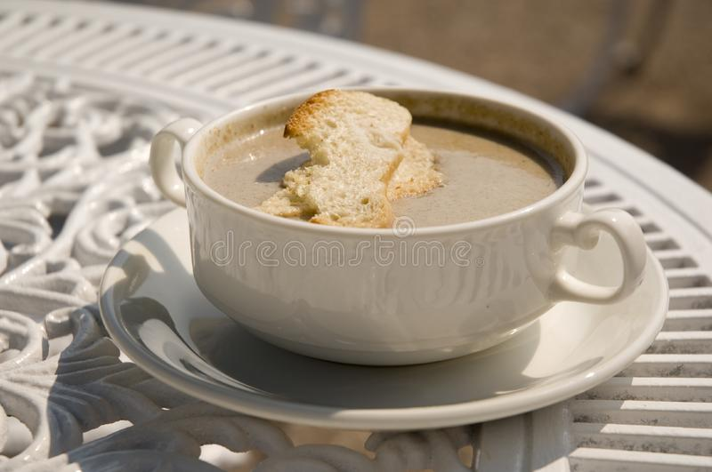 Bowl of Mushroom soup royalty free stock images