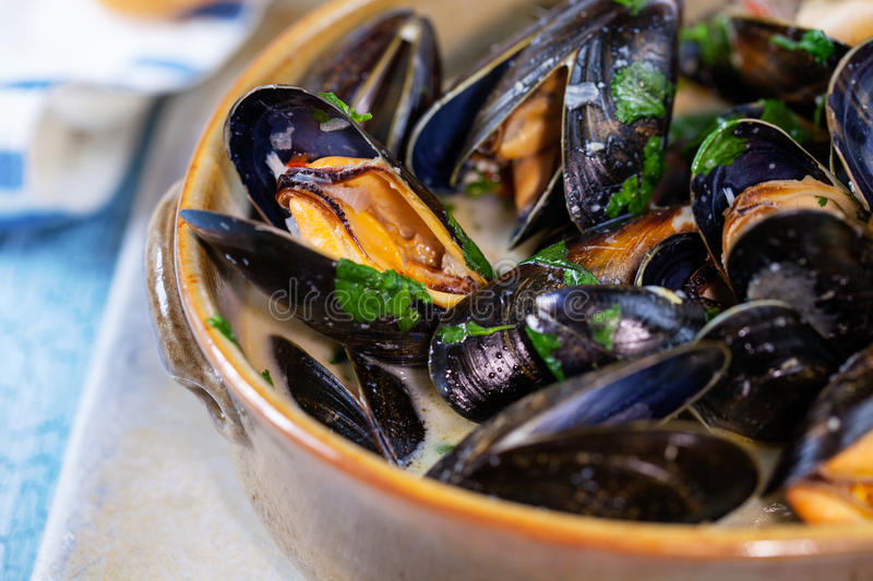 Bowl of mussels stock images