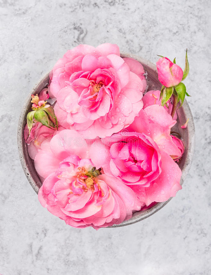 Bowl with pink roses and water on gray marble table royalty free stock photo