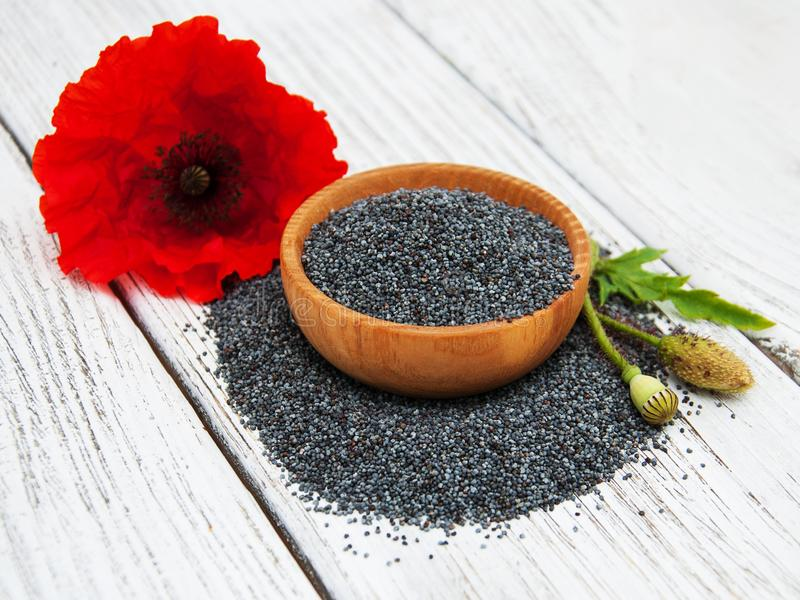 Bowl with poppy seeds. And poppy flowers royalty free stock photos