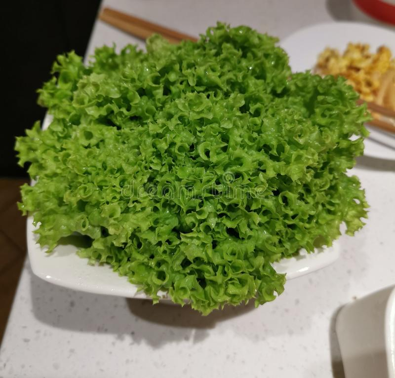 A bowl of raw lettuce royalty free stock photo