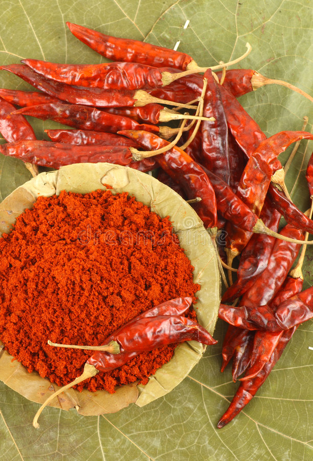 Download Bowl of red chili powder stock photo. Image of ground - 8728904