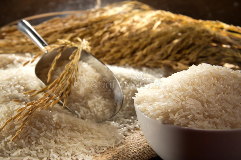 Download Bowl Of Rice stock photo. Image of white, food, cooking - 23366514