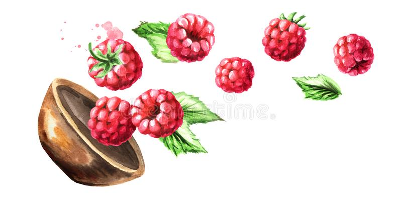 Bowl with ripe raspberry. Watercolor hand drawn horizontal illustration, isolated on white background vector illustration