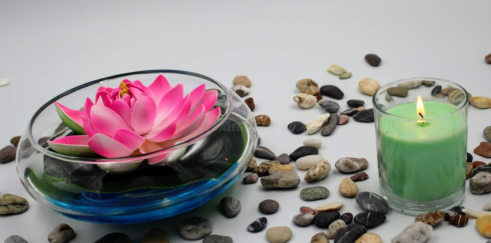 Bowl with rose lily stock photo