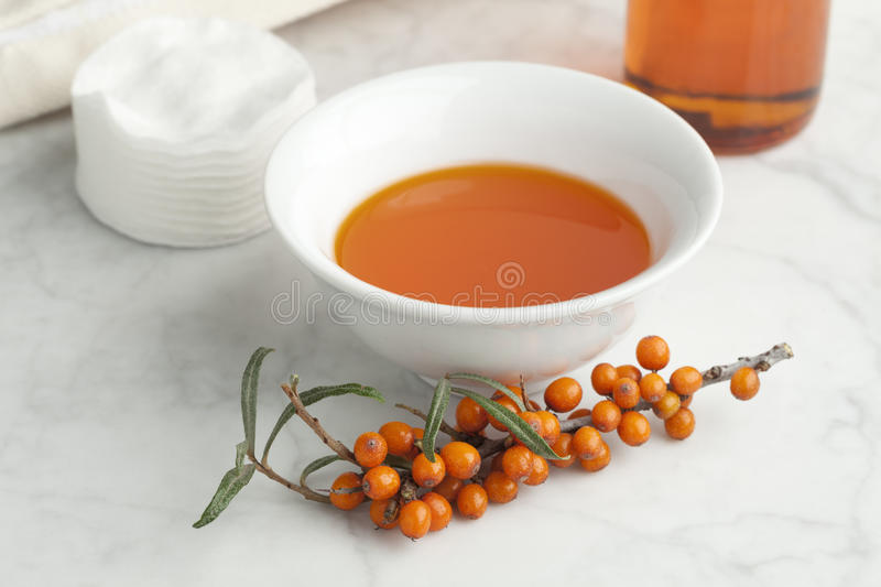 Bowl with Sea buckthorn oil. With a twig of common sea-buckthorn royalty free stock photo