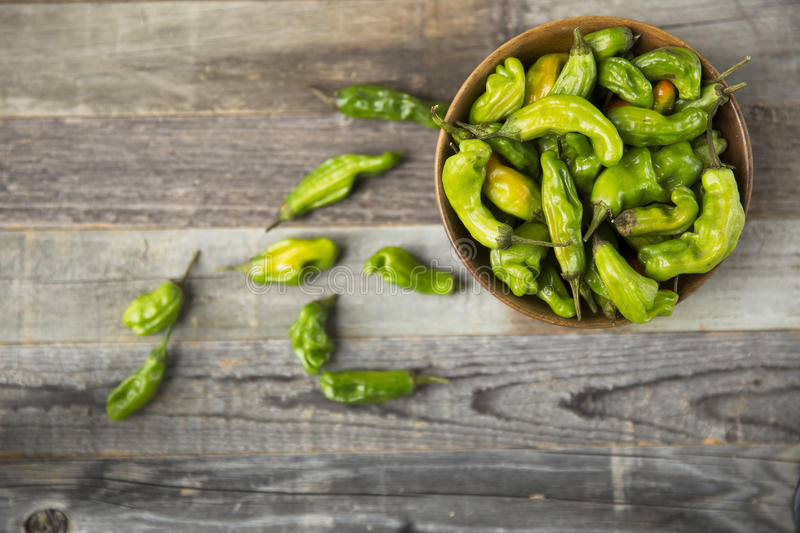Bowl of Shishito Peppers stock photo