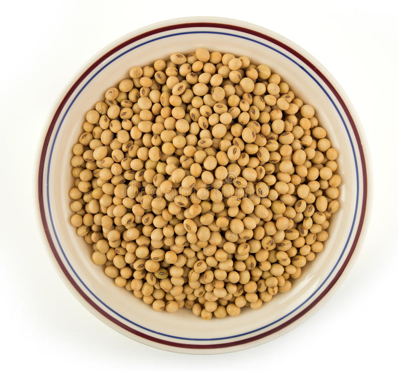 Bowl of soybean seeds on white royalty free stock image