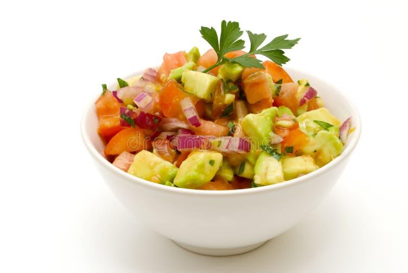 Bowl of tomato salsa royalty free stock photo