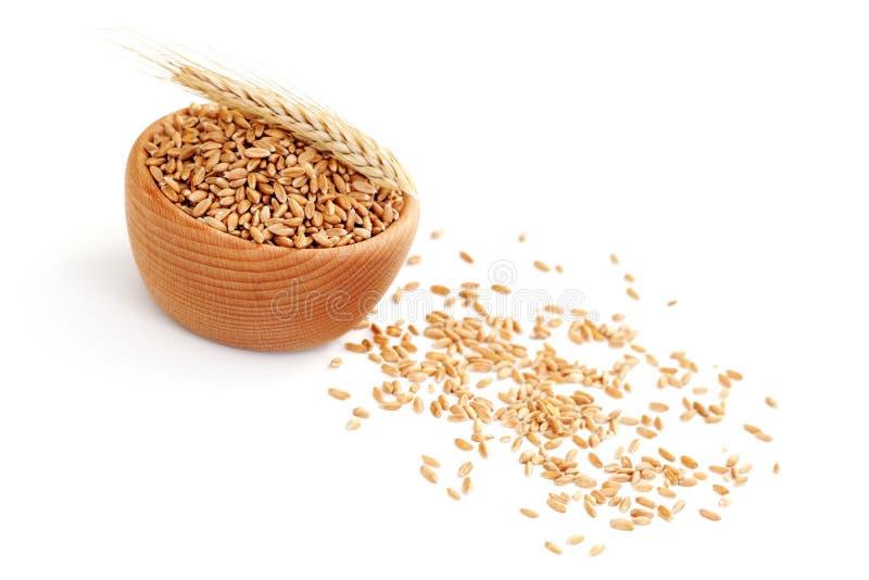 Bowl of wheat royalty free stock photos
