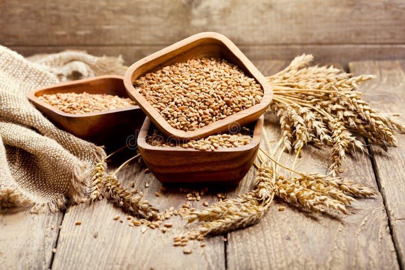 Bowl of wheat grains royalty free stock photos