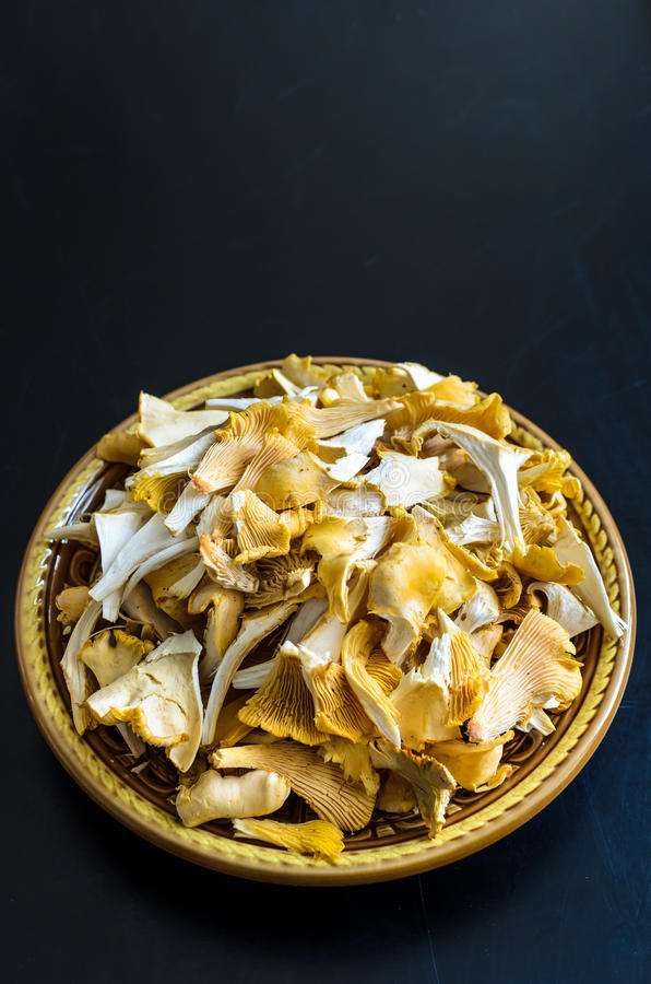 Bowl of wild fresh chanterelle mushrooms isolated on black background royalty free stock photo