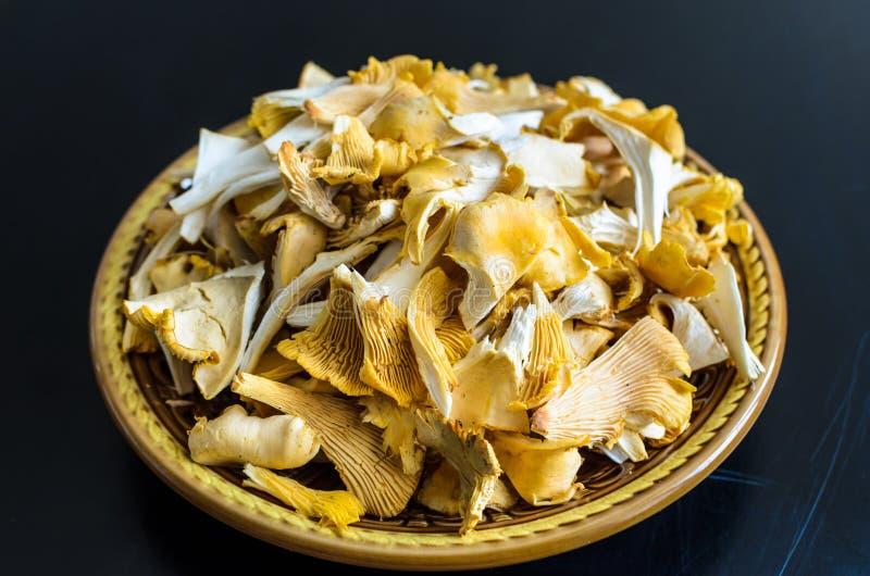 Bowl of wild fresh chanterelle mushrooms isolated on black background royalty free stock image