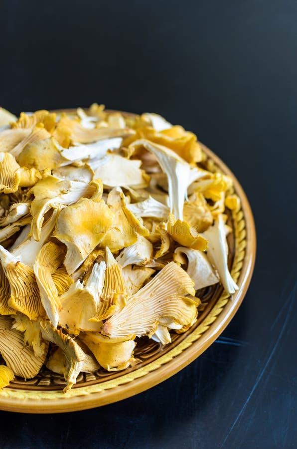 Bowl of wild fresh chanterelle mushrooms isolated on black background stock photography