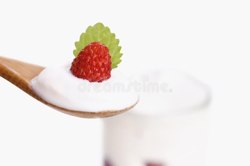 Download Bowl Of Yogurt With Wild Strawberry Stock Image - Image: 25562463