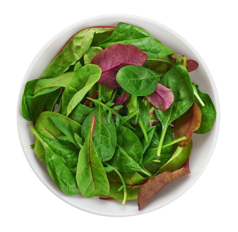 Bowla med ny grön sallad som isoleras på vit bakgrund (spinac arkivbilder