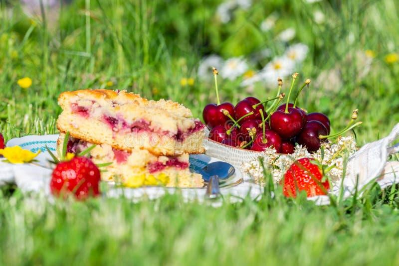 Bowla mycket av körsbär bredvid del av körsbärsröd kaka och få jordgubbar royaltyfri foto