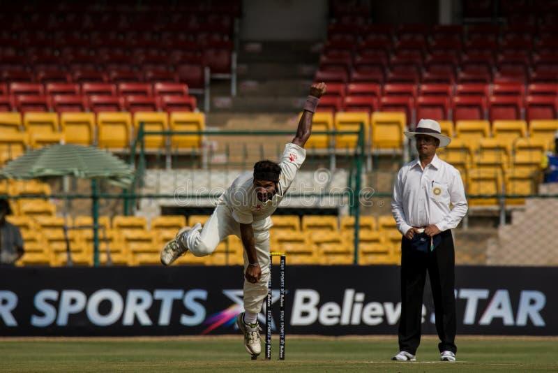 Bowling aggressivo nel cricket fotografia stock