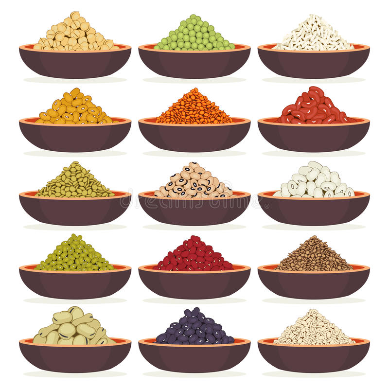 Bowls of cereals and legumes. Bowls of dried cereals and legumes isolated on white background stock illustration