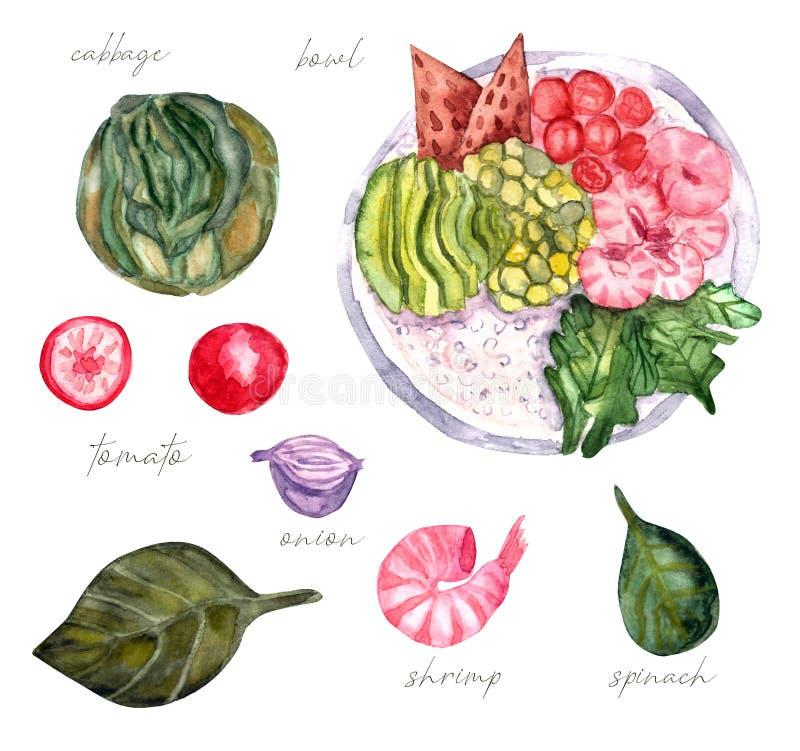 Bowlswatercolor hawaiano del camarón, comida del trende libre illustration