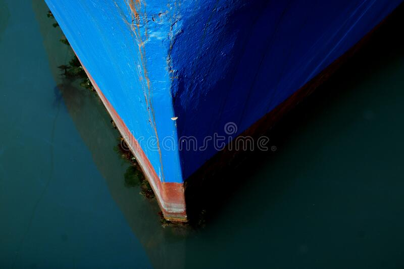 Bows (6) royalty free stock photo