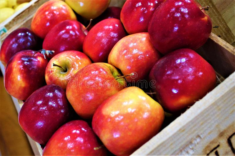 Box of apples stock photos