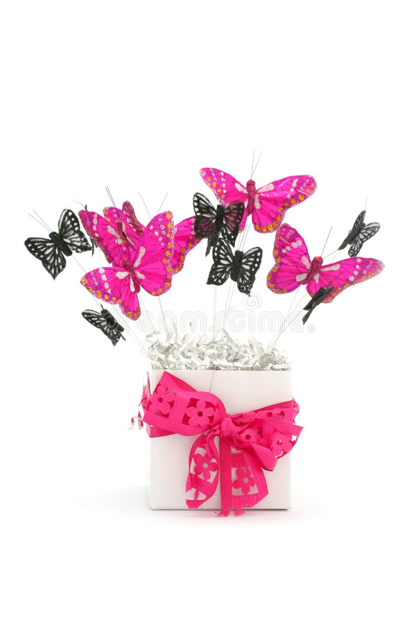 Box of Butterflies royalty free stock image