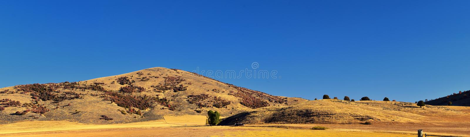 Box Elder Canyon landscape views, popularly known as Sardine Canyon, North of Brigham City within the western slopes of the Wellsv. Ille Mountains, by Logan in royalty free stock photo