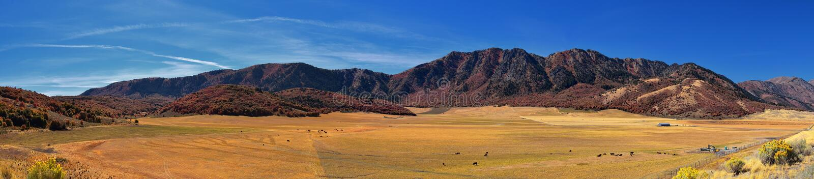 Box Elder Canyon landscape views, popularly known as Sardine Canyon, North of Brigham City within the western slopes of the Wellsv. Ille Mountains, by Logan in royalty free stock image