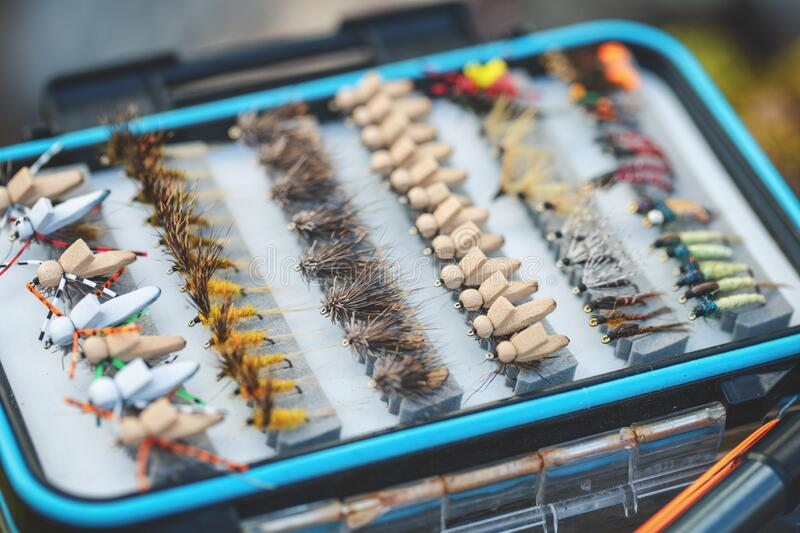 Box with fly flies. Fly fishing. Freshwater fishing stock image
